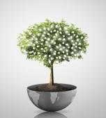 Tree Light bulb  — Stock Photo
