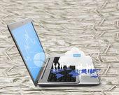 Laptop screen display — Stock Photo
