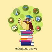 Flat design for knowledge grows concept with an owl  — Stock Vector