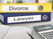 Divorce and lawyer binders — Stock Vector