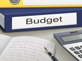 Budget binders — Stock Vector