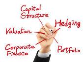 Koncepcja korporacyjnych finansów napisany odręcznie 3d — Wektor stockowy