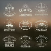 Wilderness and nature exploration emblems — Stock Vector