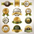Luxury premium quality golden labels collection — Stock Vector #72430625