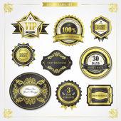 Elegant premium quality golden labels collection — Stockvektor