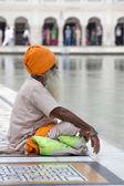 Sikh hombre visitaba el templo dorado en Amritsar, Punjab, India. — Foto de Stock