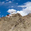 Fort and Namgyal in Leh, Ladakh, India — Stock Photo #69878479