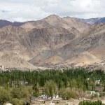 Leh, Ladakh, India — Stock Photo #69879141