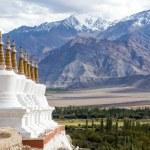 Buddhist chortens (stupa) and Himalayas mountains in the background near Shey Palace in Ladakh, India — Stock Photo #70063741
