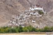 Chemdey gompa, Buddhist monastery in Ladakh, Jammu & Kashmir, India  — Foto de Stock