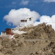 Fort and Namgyal in Leh, Ladakh, India — Stock Photo #70101577