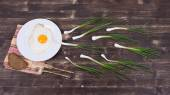 Egg , chives and black plate look like sperm competition, Spermatozoons floating to ovule — Stock Photo
