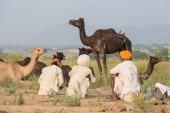 Indian three men attended the annual Pushkar Camel Mela — Stock Photo