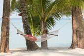 Hammock on a beautiful tropical beach — Stock Photo
