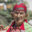 Old local woman in Manali, India — Stock Photo #74268357