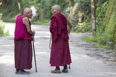 Two old Tibetan Buddhist monk in the Dharamsala, India — Stock Photo