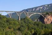 Bridge is a concrete arch bridge over the Tara River in northern Montenegro — Stock Photo
