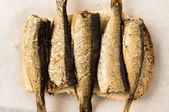 Sandwich with sardines — Stock Photo