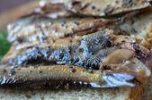 Smoking with wood sardine appetizer — Stock Photo