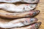 Tilapia fish carcasses — Stock Photo