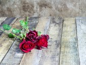 Red rose on wooden board background — Стоковое фото