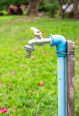 Faucet with In The Park — Stock Photo