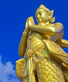 Mythical female bird with a human head — Stock Photo