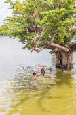 Myanmar children were playing by jumping from the tree at the river near U Bein Bridge — Stock Photo