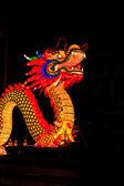 Dragon in the night — Stock Photo