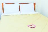 сердечный вишневый цвет сакуры — Стоковое фото