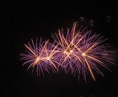 Buntes Feuerwerk — Stockfoto