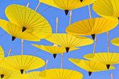 Asiático de paraguas — Foto de Stock