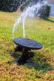 Sprinkler system in a farm field grass — Stock Photo