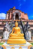 Ват Чеди Луанг Храм — Стоковое фото