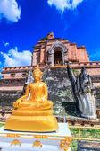 Wat chedi luang-templet — Stockfoto