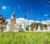 Wat Suan Dok Golden pagoda — Foto de Stock