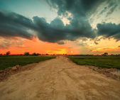 Sunset over road — Stock Photo
