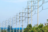 Row of wire pole electricity post — Stock Photo