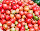 Fresh  Tomatoes background — Stock Photo
