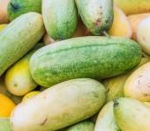 Fresh cucumbers background — Stock Photo