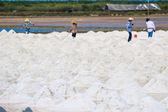 Salt fields in Thailand — Foto Stock