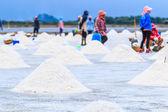 Salt in salt seaside farm — Stock Photo