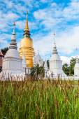 Wat Suan Dok Golden pagoda — Stock Photo