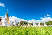 Wat Suan Dok Golden pagoda — Stock Photo