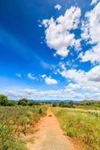 Landscape the road in rural areas — Stock Photo