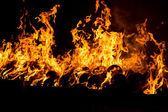Burning fire flames — Stock Photo