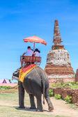 Tourists riding elephants — Stock Photo