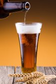 Beer bottle with a glass and spica in golden background. — Stock Photo