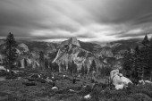 Yosemite — Stockfoto