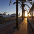 Sunset at the famous Puerto Portals in Majorca — Stock Photo #67875631